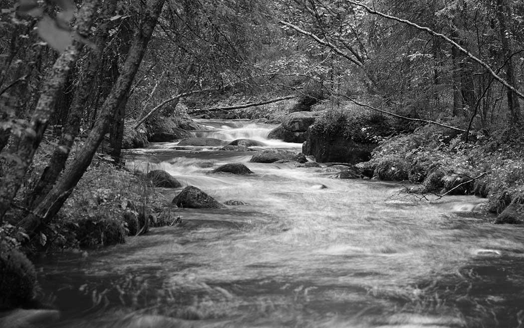 Joki - kuva1
