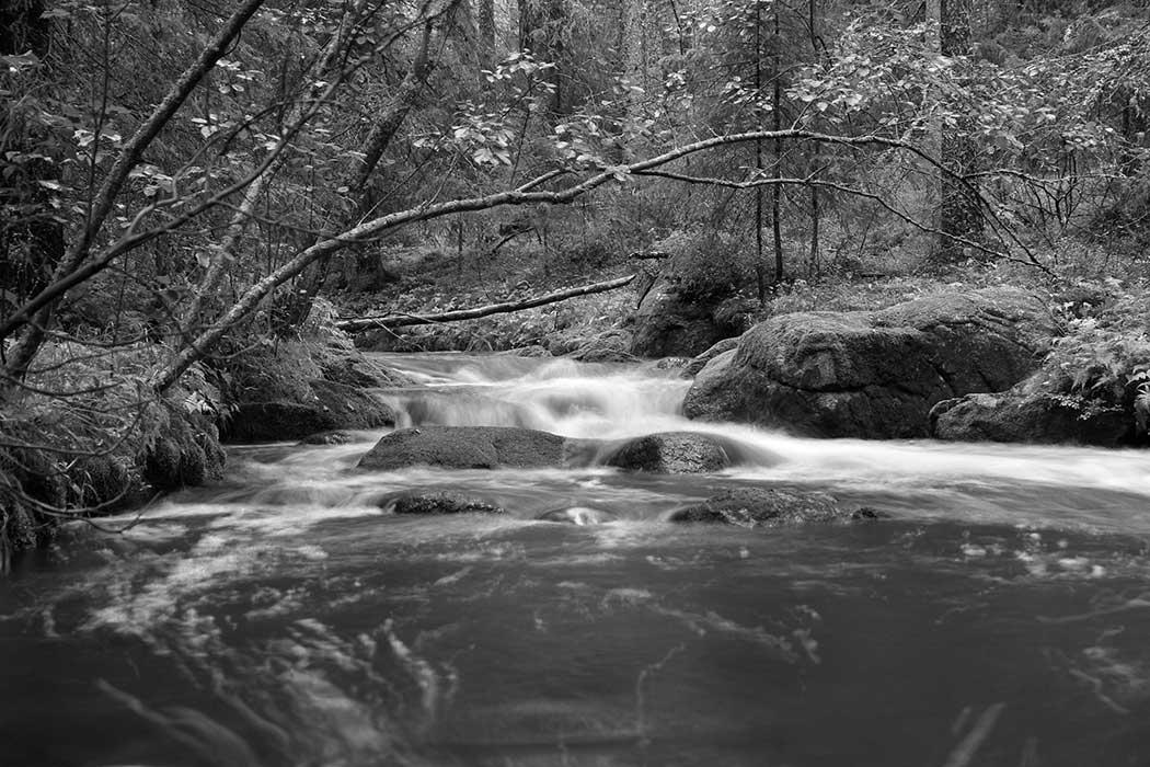 Joki - kuva2